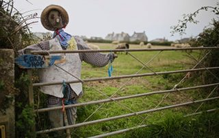 scarecrow by a gate, cornwall
