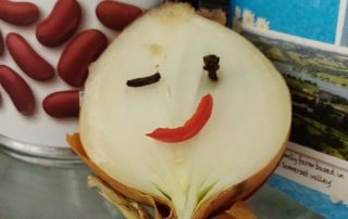 half an onion in fridge with face made of chilli and cloves