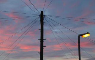 telegraph pole at dawn